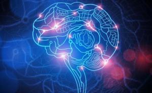 Атеросклеротическая бляшка может уменьшиться на фоне лечения
