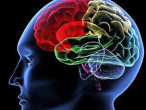 Жизнь после инсульта: восстановление работы головного мозга