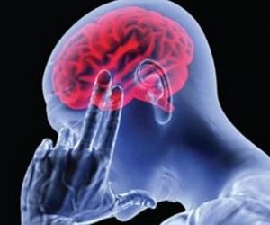 Кровоснабжение мозга — залог жизни и здоровья