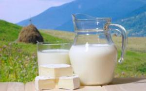 Молоко благоприятно сказывается на работе мозга