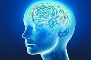Ученые создали аппарат для подглядывания за мозгом