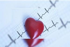 15 необычных фактов о сердечно-сосудистой системе человека
