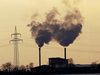 Загрязнение воздуха нарушает работу сосудов в легких
