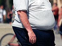 Ожирение затрудняет процесс тренировки памяти