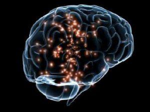 Билингвизм экономит ресурсы мозга