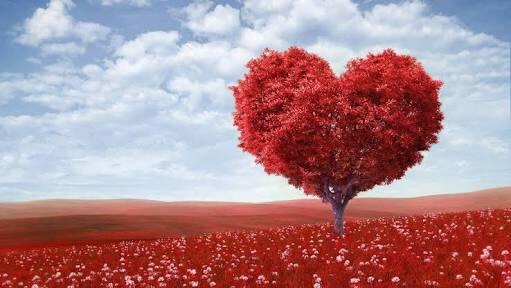 Выхлопные газы могут быть полезны для здоровья сердца