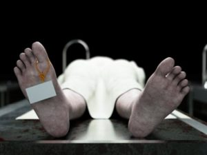 Мозг человека после смерти впадает в спячку