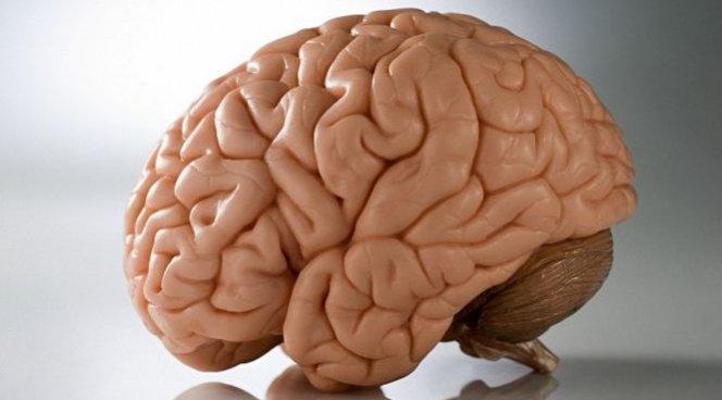 Названы доступные супернапитки для мозга