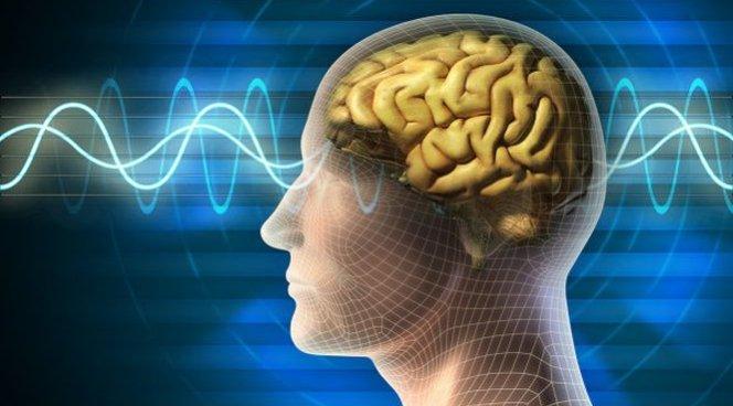 Врачи определили тип людей с быстро стареющим мозгом