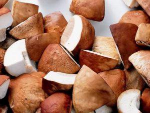 Врачи: грибы защищают от тяжелых болезней