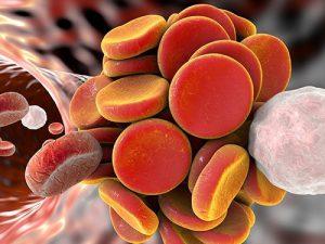 Найдена причина тромбоза у онкобольных