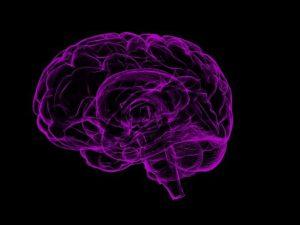 Ученые открыли «центр честности» в мозге и научились им управлять