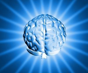 Изменения мозга, характерные для аутизма, можно выявить уже в шестимесячном возрасте