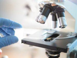 Спинальная мышечная атрофия – «сестра» бокового амиотрофического склероза