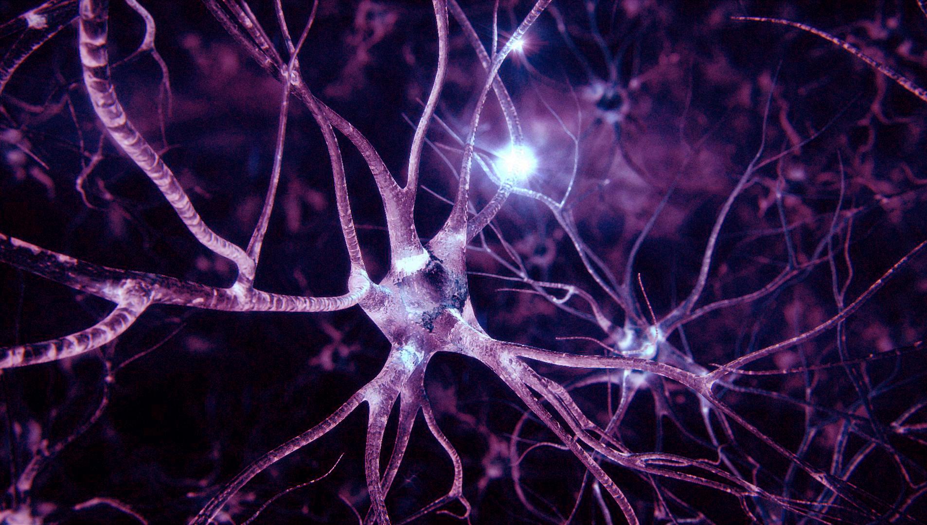 Медики подсказали, как быстро восстановить нервную систему