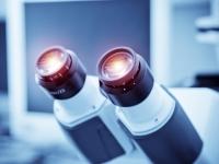 MSD линцензировала экспериментальное ЛС для лечения болезни Альцгеймера