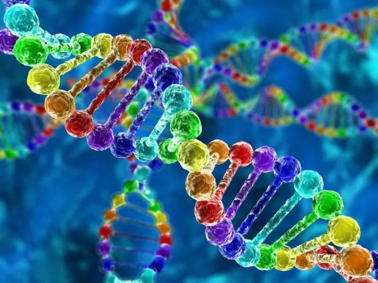 Найдены три гена, ответственные за проникновение раковых клеток молочной железы в мозг