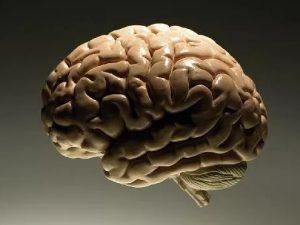 Мозг человека может искажать изображение тела