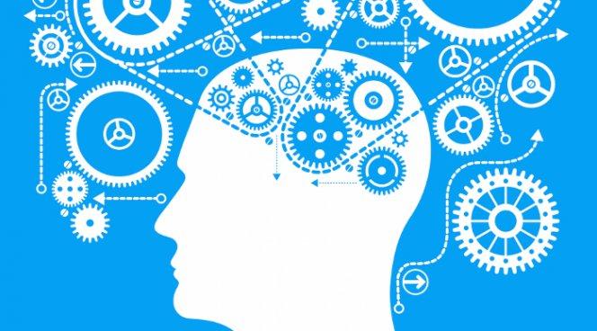 Чтение радикально меняет мозг человека