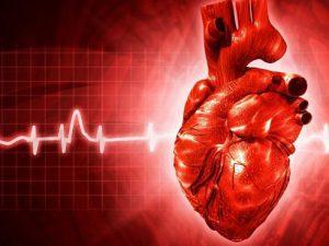 Ученые доказали опасность стресса для сердца