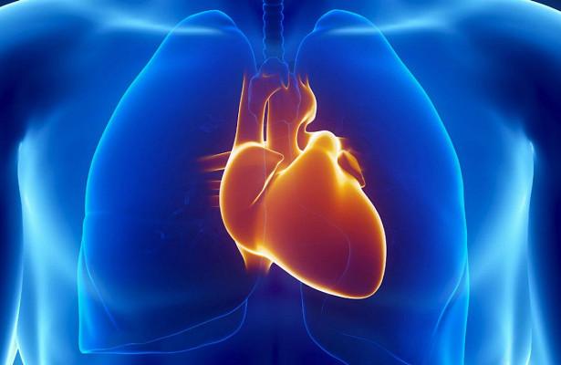 «Заплатки» для сердца будут печатать на 3D-принтере