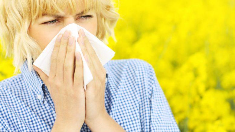 Как оградить себя от аллергии