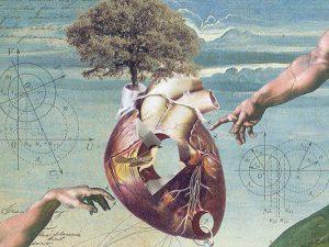 Разрыв сердца: что на самом деле может его вызвать