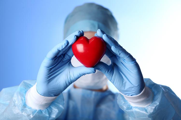 Донорские сердца можно будет хранить несколько дней
