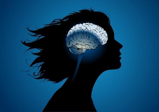 Схема мозга передается детям по наследству