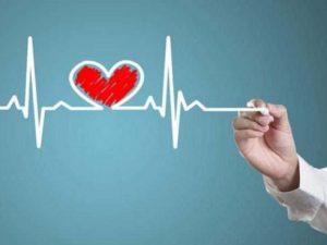 Ученые: собачники не страдают от болезней сердца