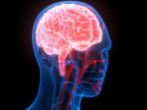 Одной из причин развития болезни Альцгеймера могут стать проблемы с сердцем