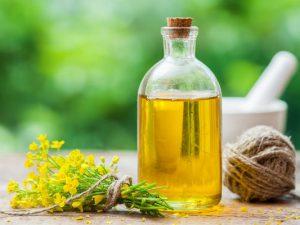 Ученые: рапсовое масло канолы ухудшает память