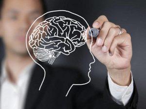 Как заставить мозг результативно работать?