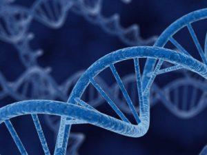 Обнаружены новые причины склероза