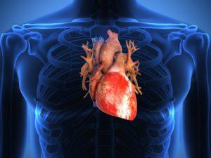 Специалисты разработали метод, восстанавливающий поврежденную сердечную ткань