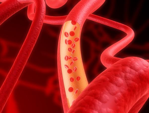 Ученые создали клетки, выстилающие кровеносные сосуды
