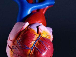 Исследователи выяснили, кто больше всего подвержен риску смерти после сердечного приступа