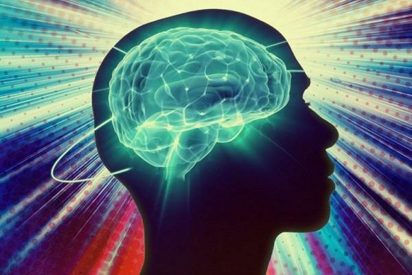 Друзей видно по мозговой активности, заявили ученые