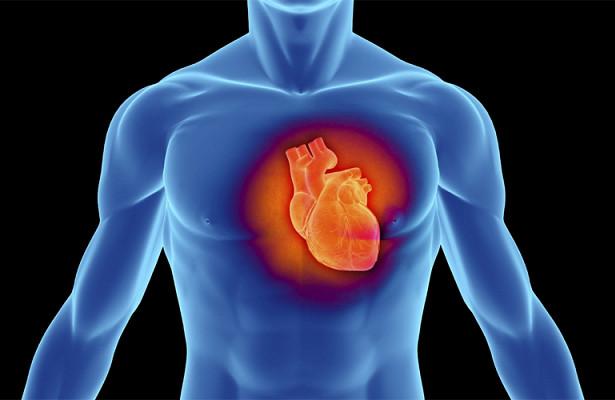 Как прокачать свое сердце и защититься от инфаркта