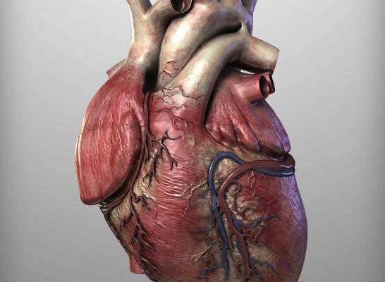 Препарат от псориаза может снизить риск заболеваний сердца