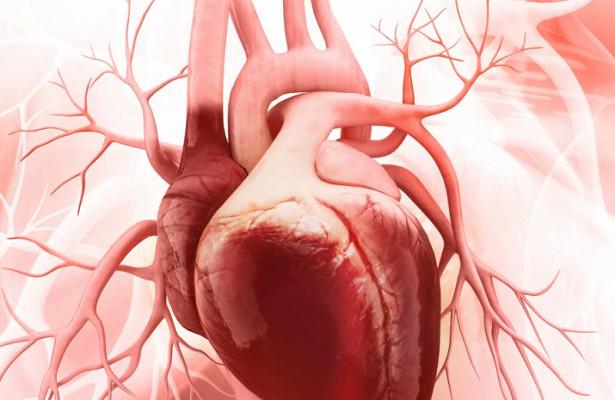 Пороки сердца снижают выживаемость при сердечной недостаточности
