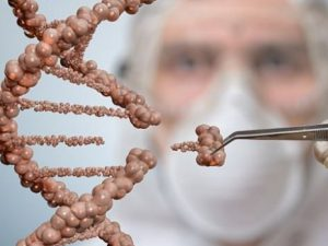 Ученые будут использовать генетическую модификацию для лечения заболевания крови