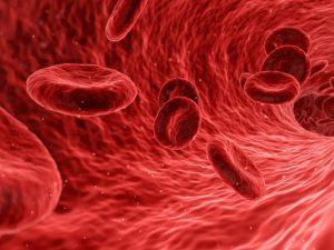 В Австралии по анализу крови научились определять хроническую боль