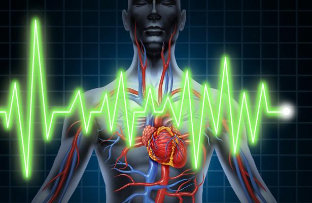 Что происходит с организмом после остановки сердца
