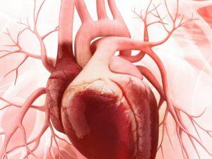 Число угрожающих сердечных приступов в Израиле снизилось за 10 лет вдвое