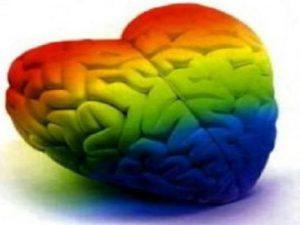 Психоделики улучшили нейропластичность мозга животных