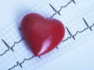 Стволовые клетки помогут в предсказании болезней сердца