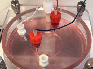 Можно ли напечатать живое сердце на 3D-принтере