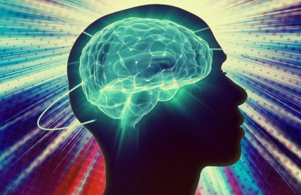 Как живет мозг после смерти