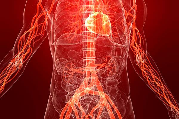 8 продуктов, которые способны эффективно очистить артерии